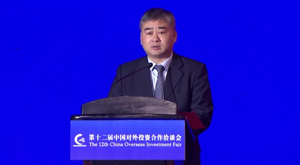 吴胜卫--第十二届中国对外投资合作洽谈会演讲